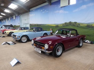 TR 6 on display