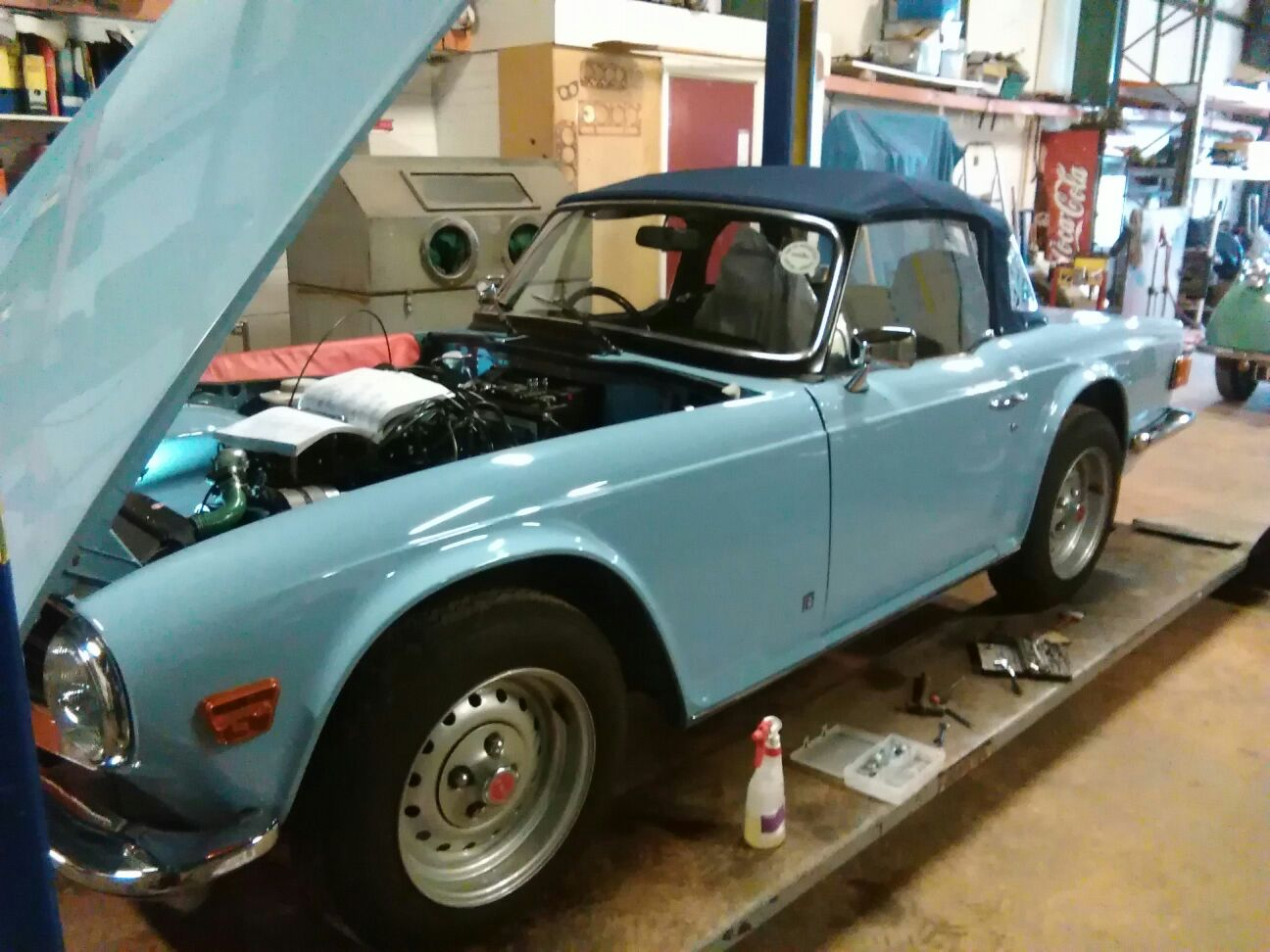 Best Standard Tr6 In The World Rbw